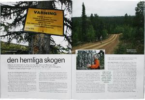 Den-hemliga-skogen300