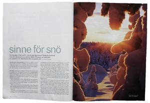 Sinne-för-snö300