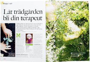 Låt-trädgården-bli-din-terapeut300