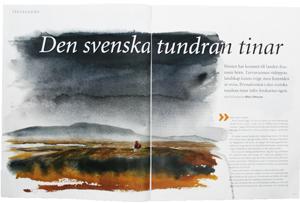 Den-svenska-tundran-tinar300